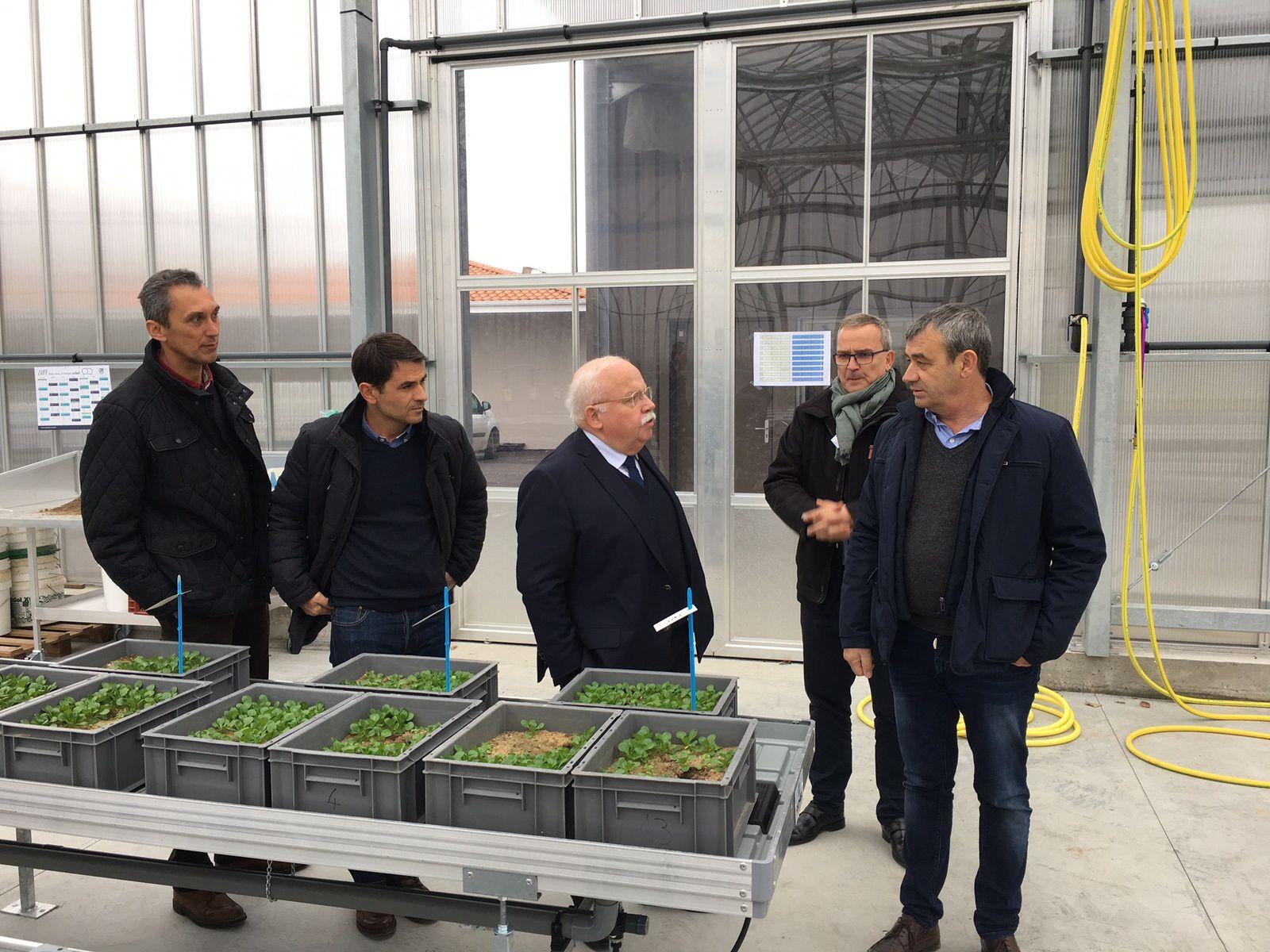 RDV avec  Philippe RETIÈRE président des Maraichers Nantais et son équipe