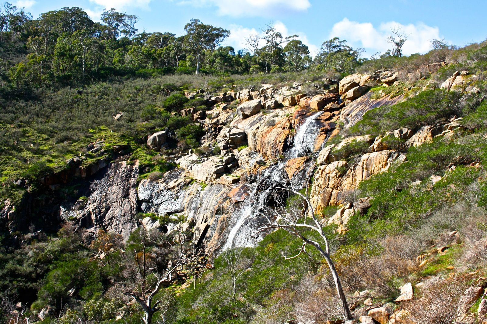 Ellis Brook Valley / Serpentine