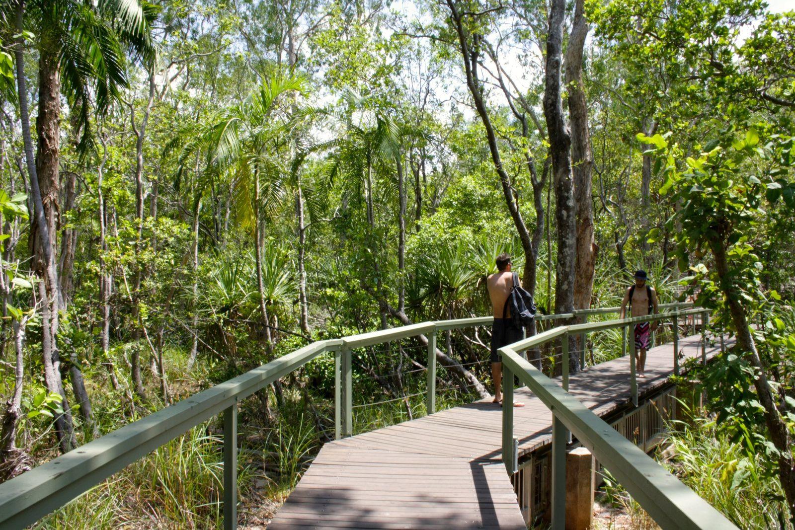 Darwin, Litchfield National Park