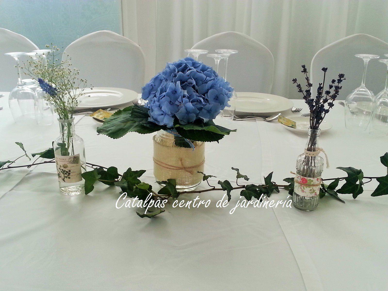 Boda azul en Villa Amelia - Catalpas centro de jardinería