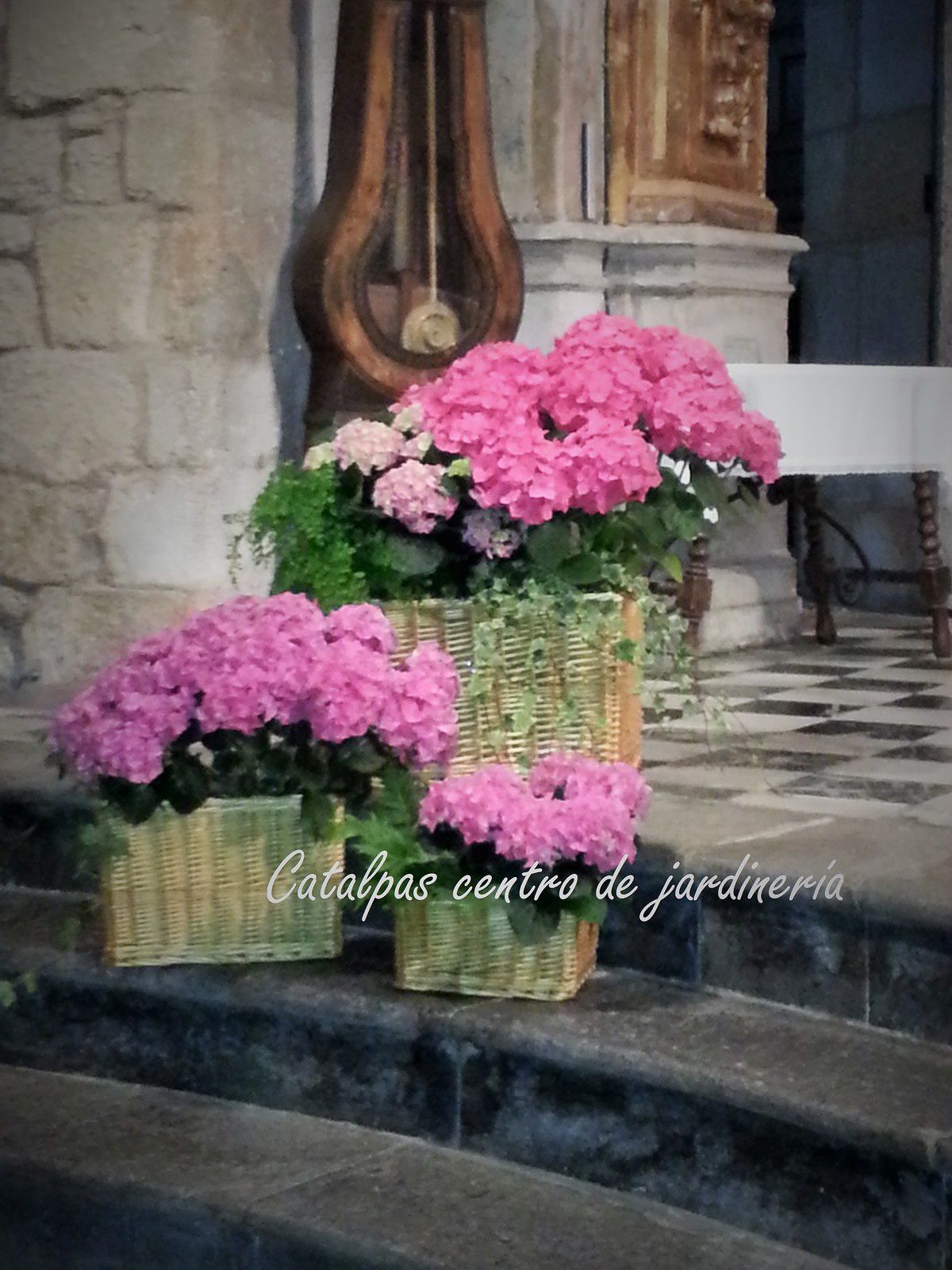 Iglesia - catalpas