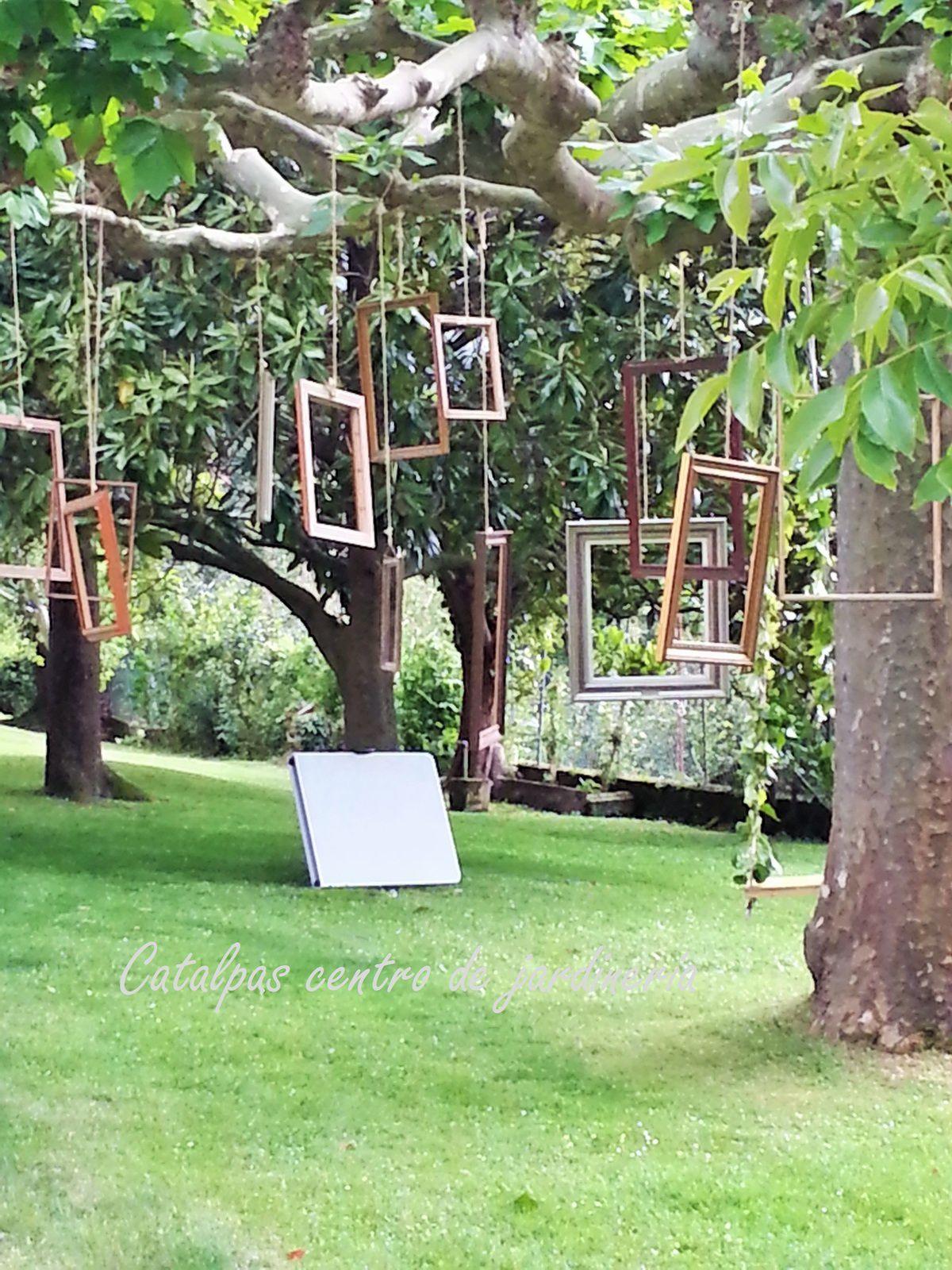 Detalle jardín - catalpas
