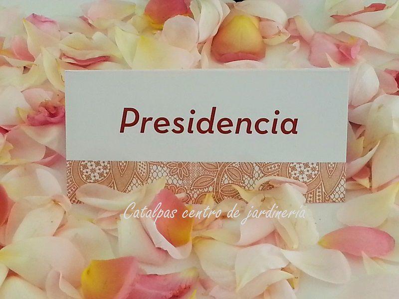 catalpas - mesa presidencial