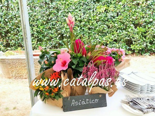 catalpas - detalles decoración