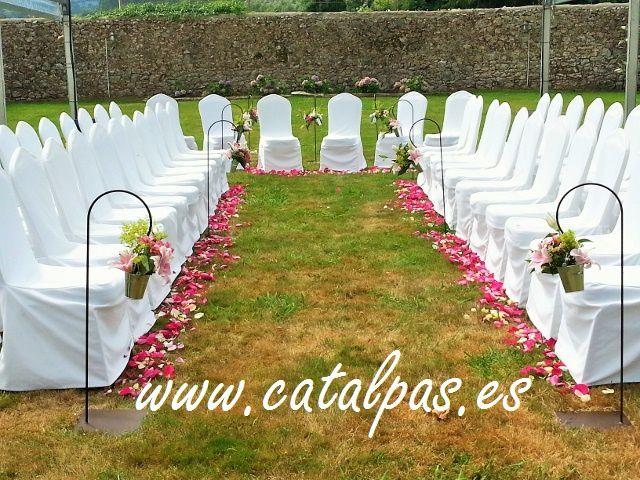 catalpas - decoracion