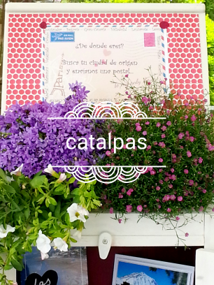 Decoración #catalpas
