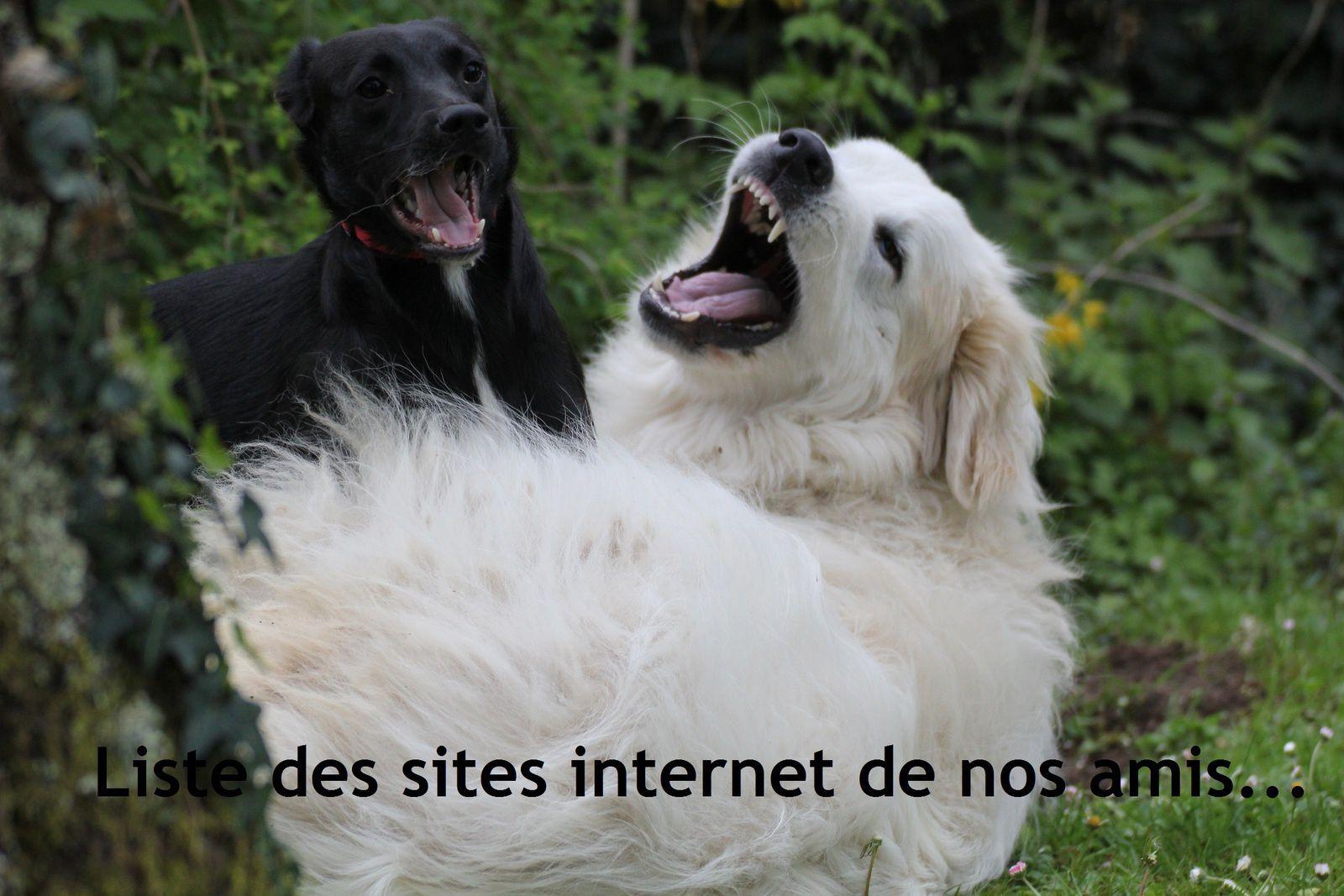 La liste des sites internet de nos amis (incomplète)...