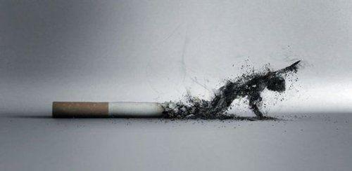 Politique anti-tabac, la France s'y prend-elle comme un pied ?