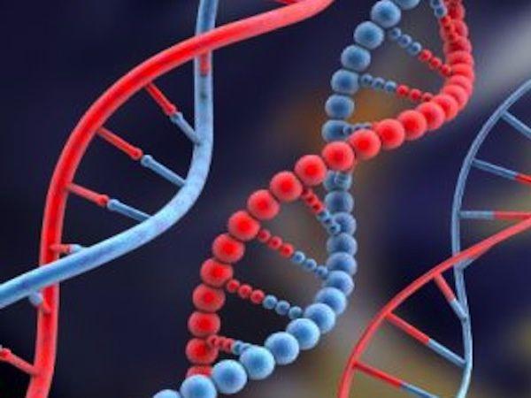 La cigarette provoque des mutations génétiques
