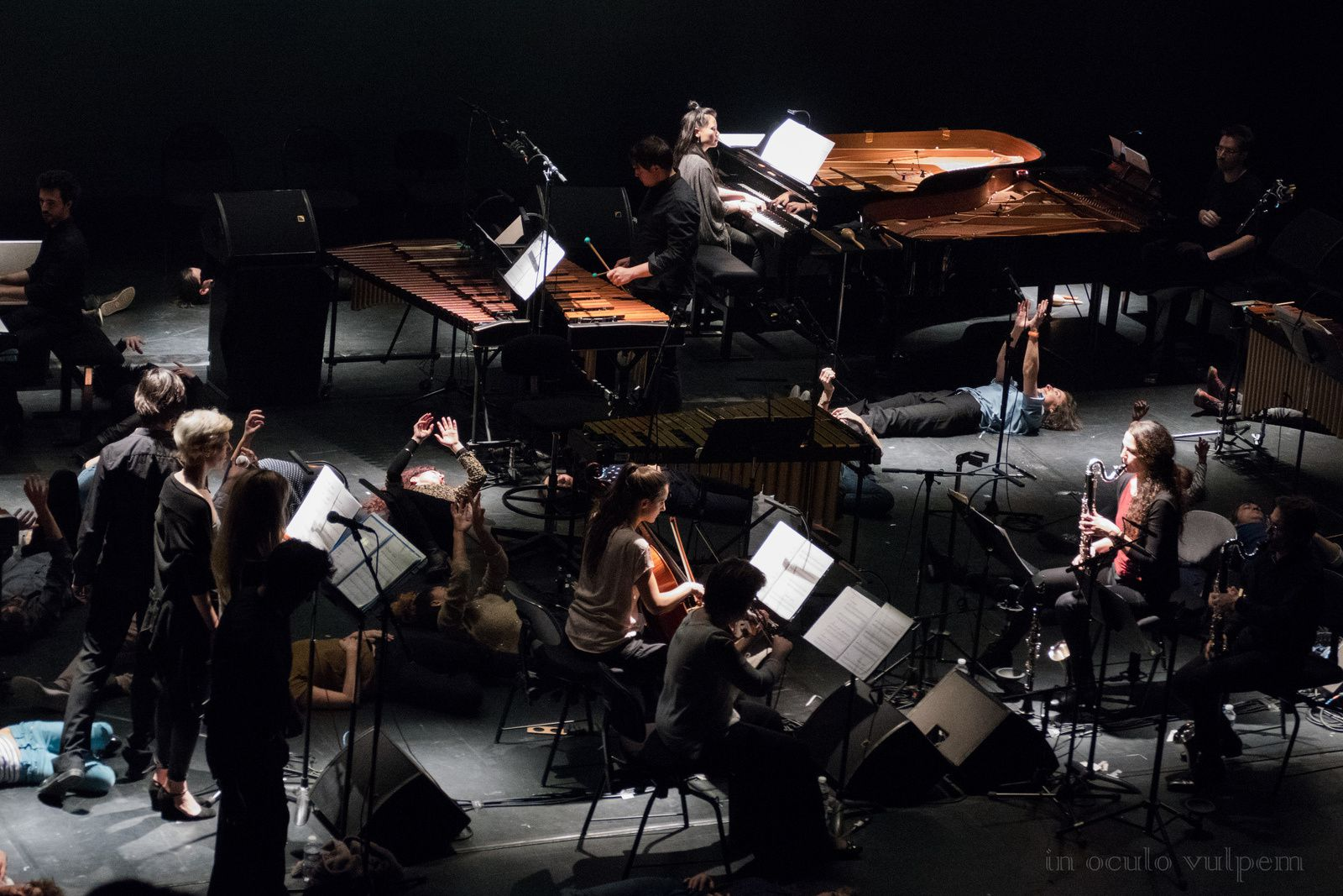 Music for 18 musicians, Steve Reich/Compagnie Sylvain Groud