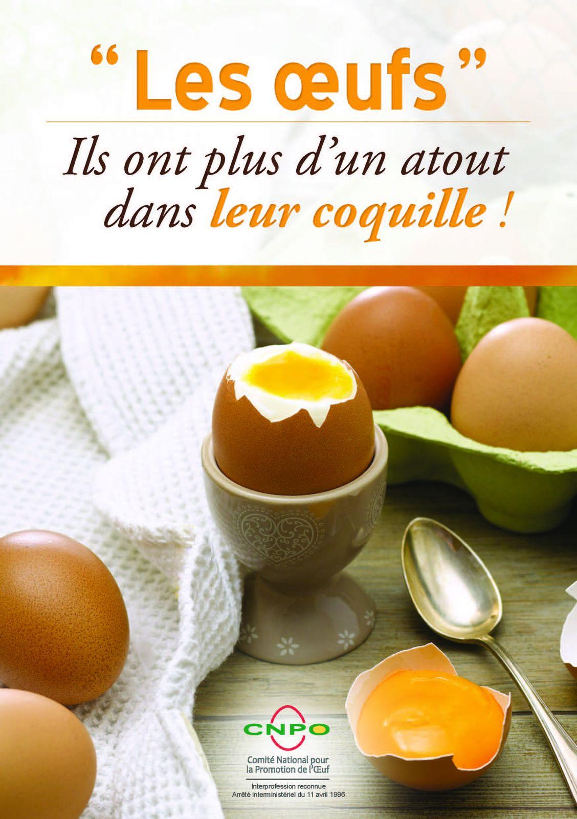 Nouveau : un livret interactif pour tout savoir sur les œufs !