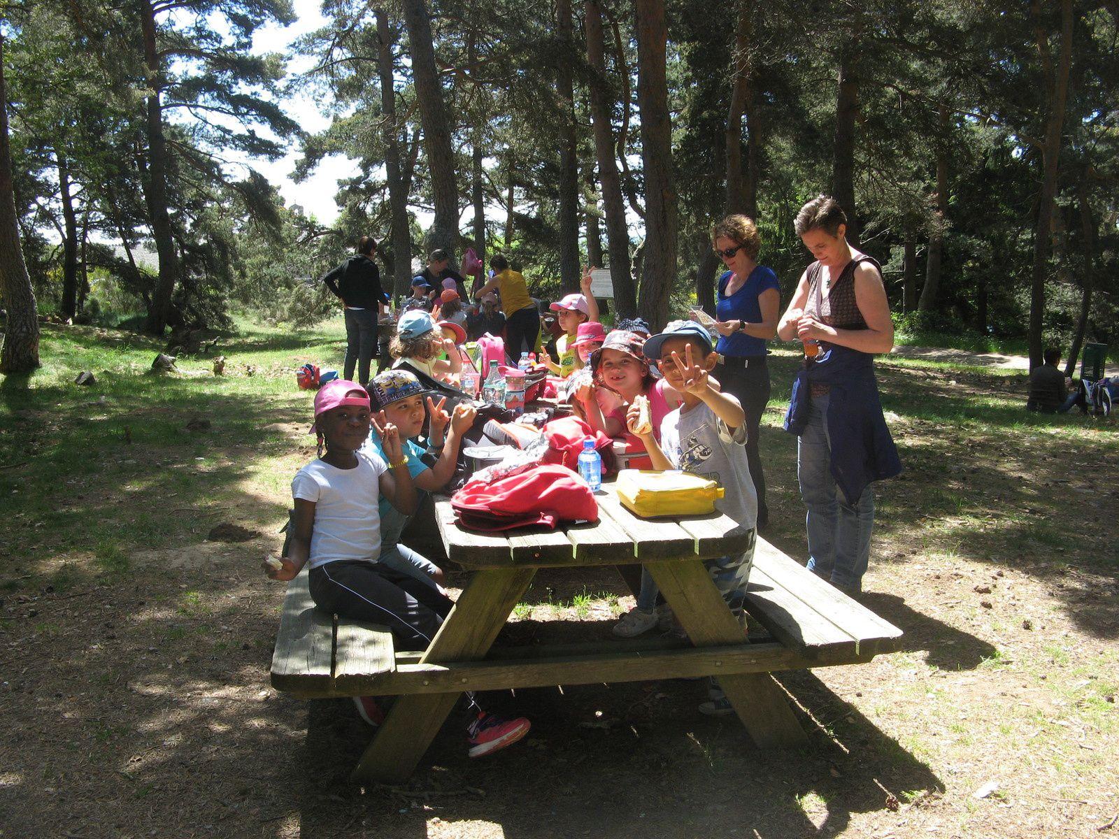 Les trois classes de maternelle sont allées voir les loups du Gévaudan