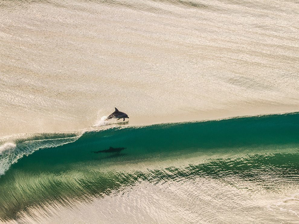 Source: National Geographic, Photo of a day