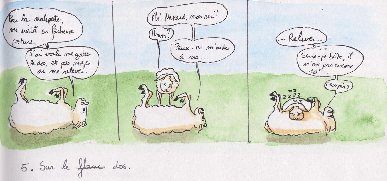 Page 3: Sur le flanc... non, le dos.