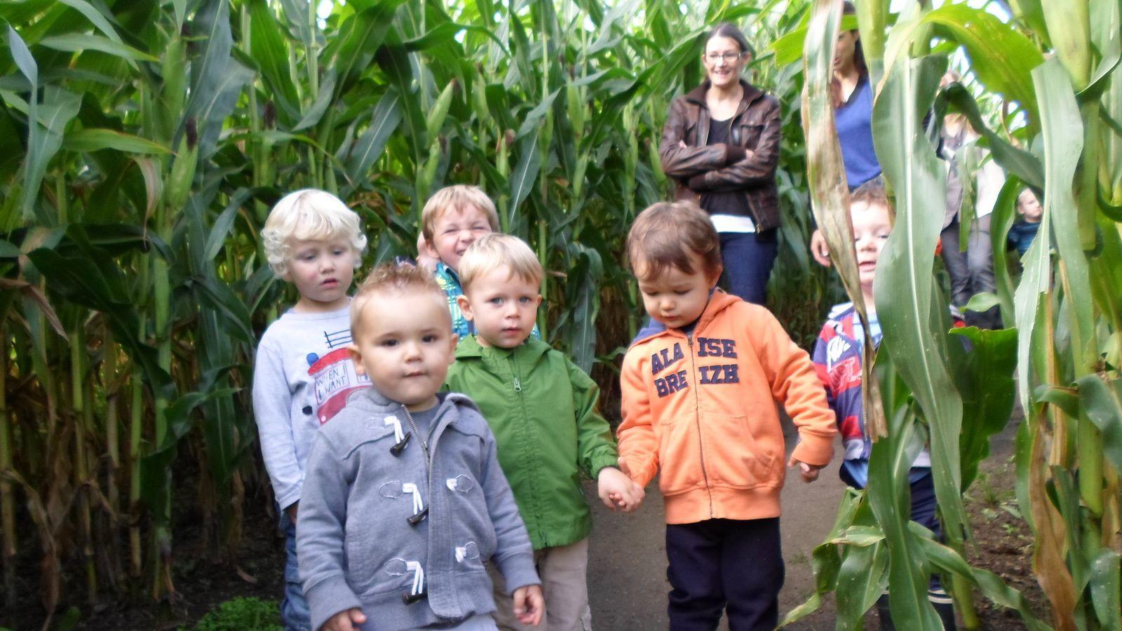 Nathan H, Antoine, Paul, Ruben, Manech, Nathan E dans le grand labyrinthe à la recherche de l'indienne