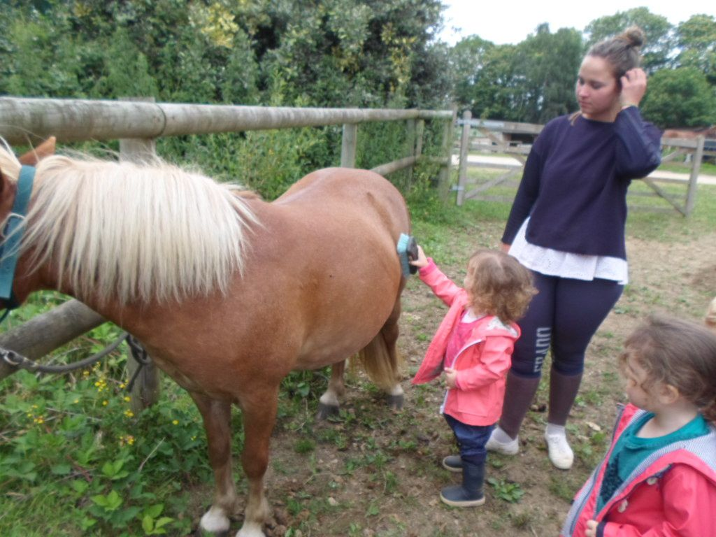 A cheval !!