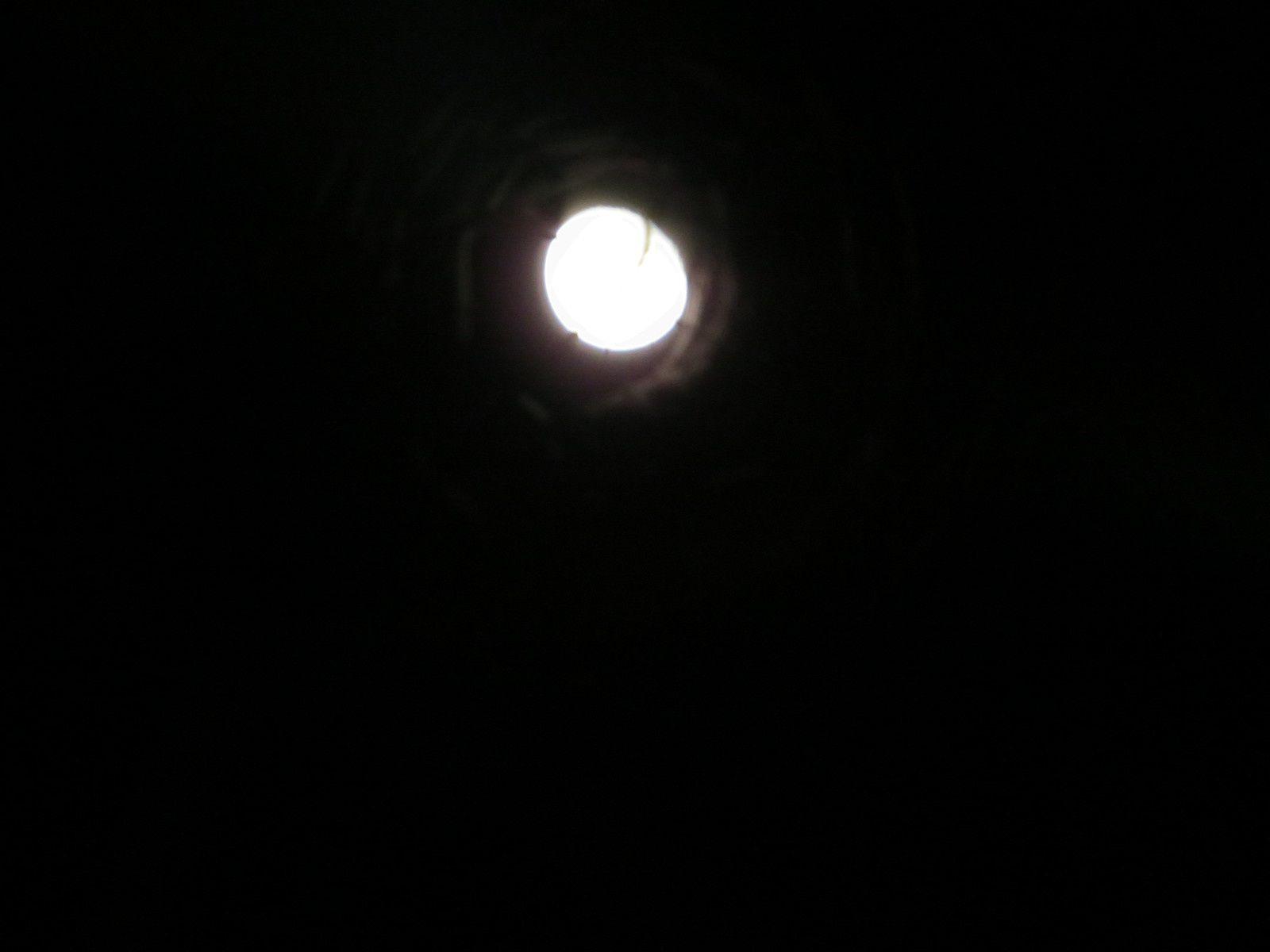 Soirée de lune