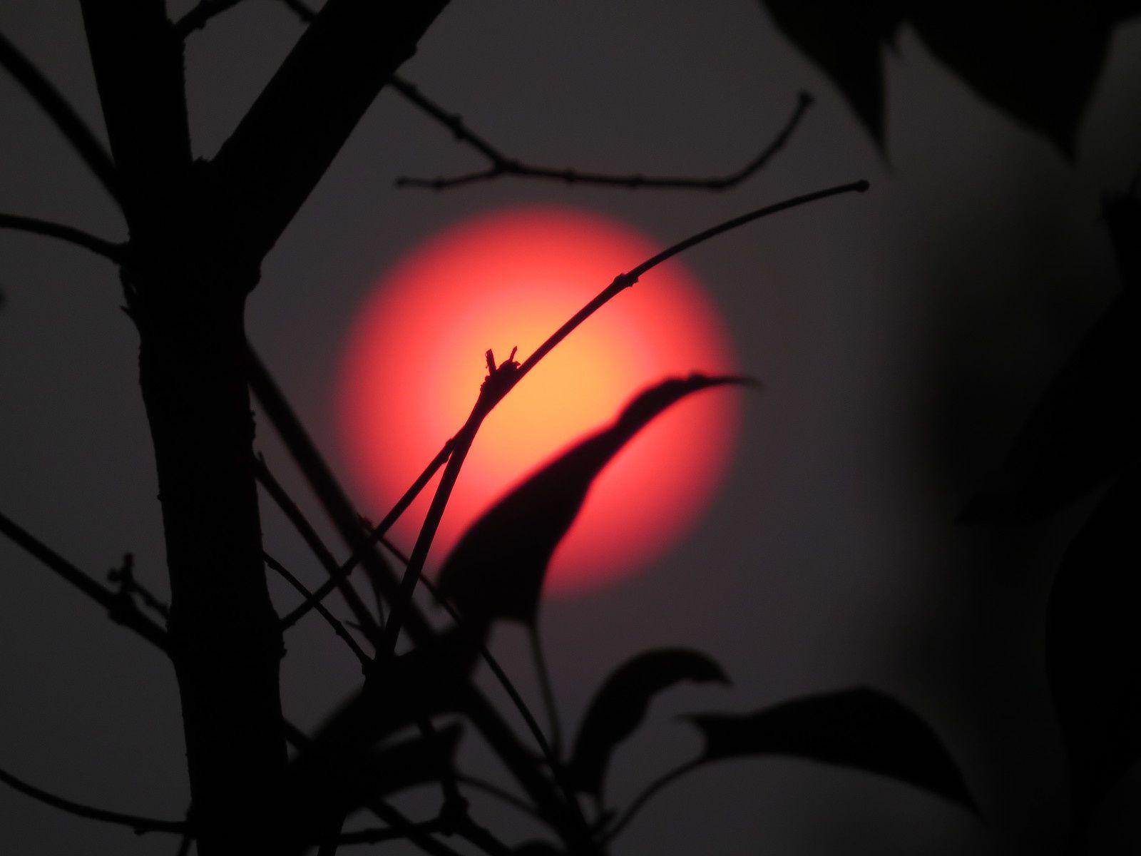 Soleil rouge chez nous c 39 est comme a la vie tout - Soleil rouge aubagne ...