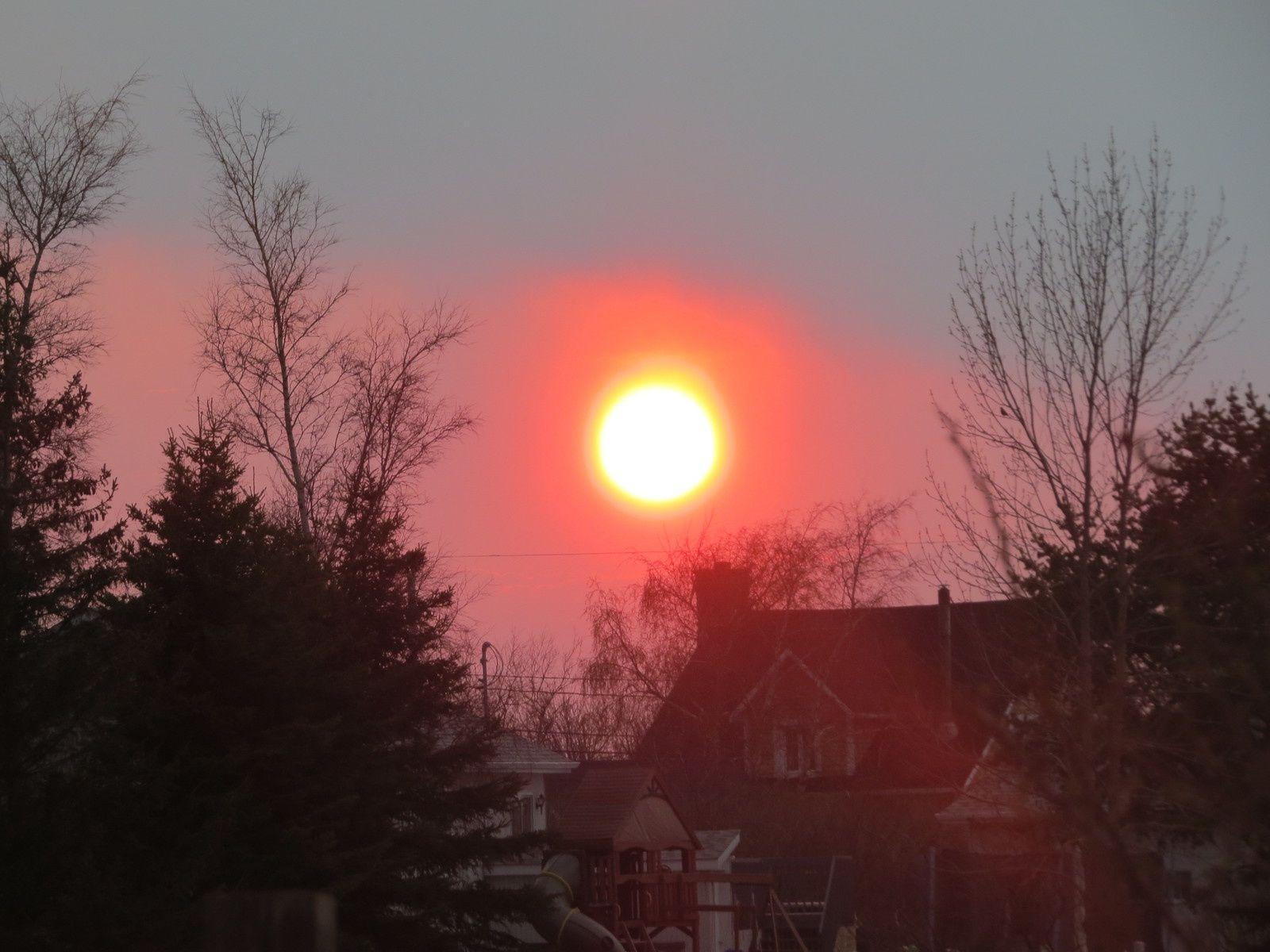 Le soleil d' ici !