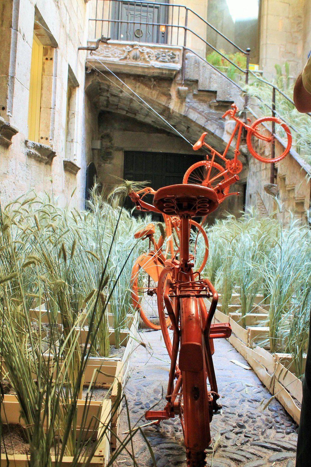 Le temps des fleurs à Gérone ou Girona temps de Flors