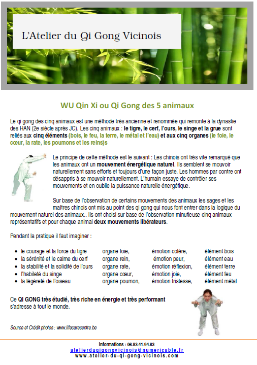 Flyer Qi Gong des animaux