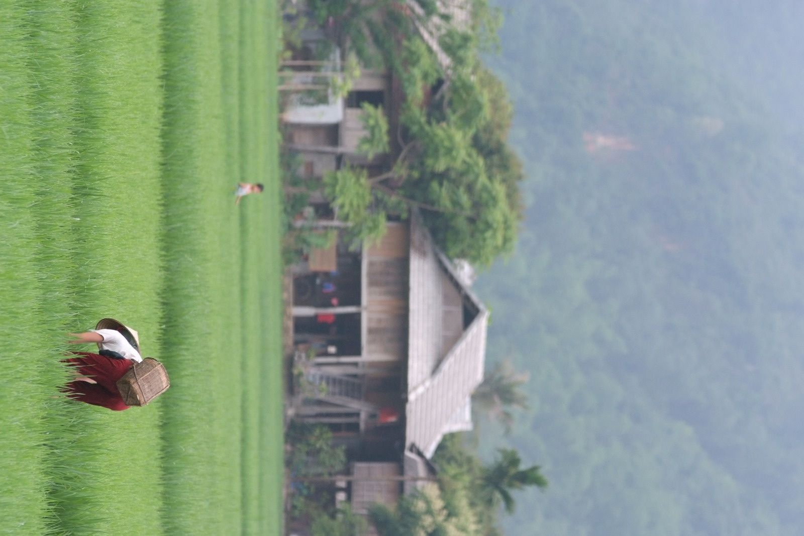 Nord Laos