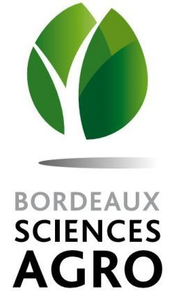 Sport Campus Football Féminin - Bordeaux Sciences Agro