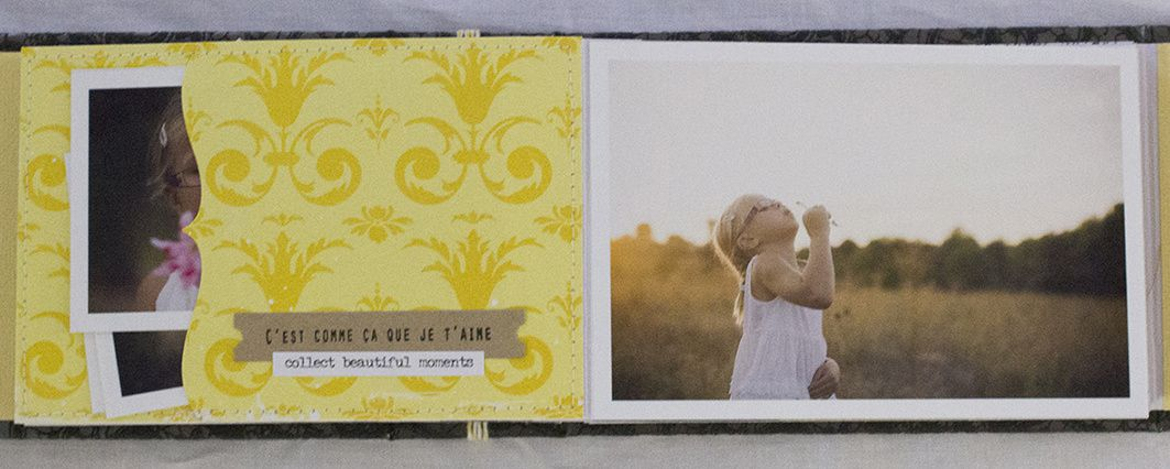 Mini Album &quot&#x3B;Devant l'Objectif&quot&#x3B;