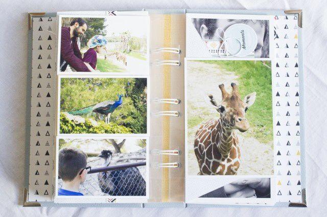 - Mini Album &quot&#x3B;Une journée au Zoo&quot&#x3B;