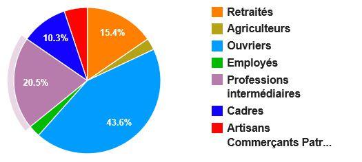 Répartition des professions (élections municipales Mooslargue 2014)
