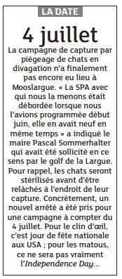 Chats - Independance Day (article du journal DNA du 29/06/2016)