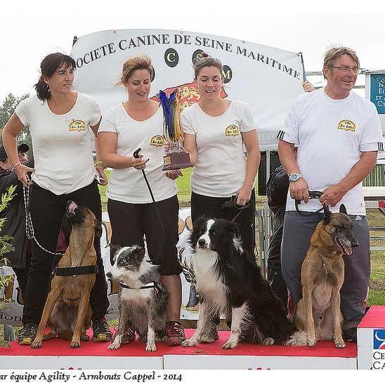 Honneurs aux Seino-marin(e)s à la finale du Trophée Grande Région d'Agility TGR