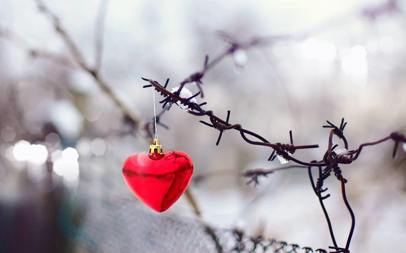 Poèmes en février : Fêtons l'amour !L'amour et la folie de Jean de La Fontaine (1621-1695)