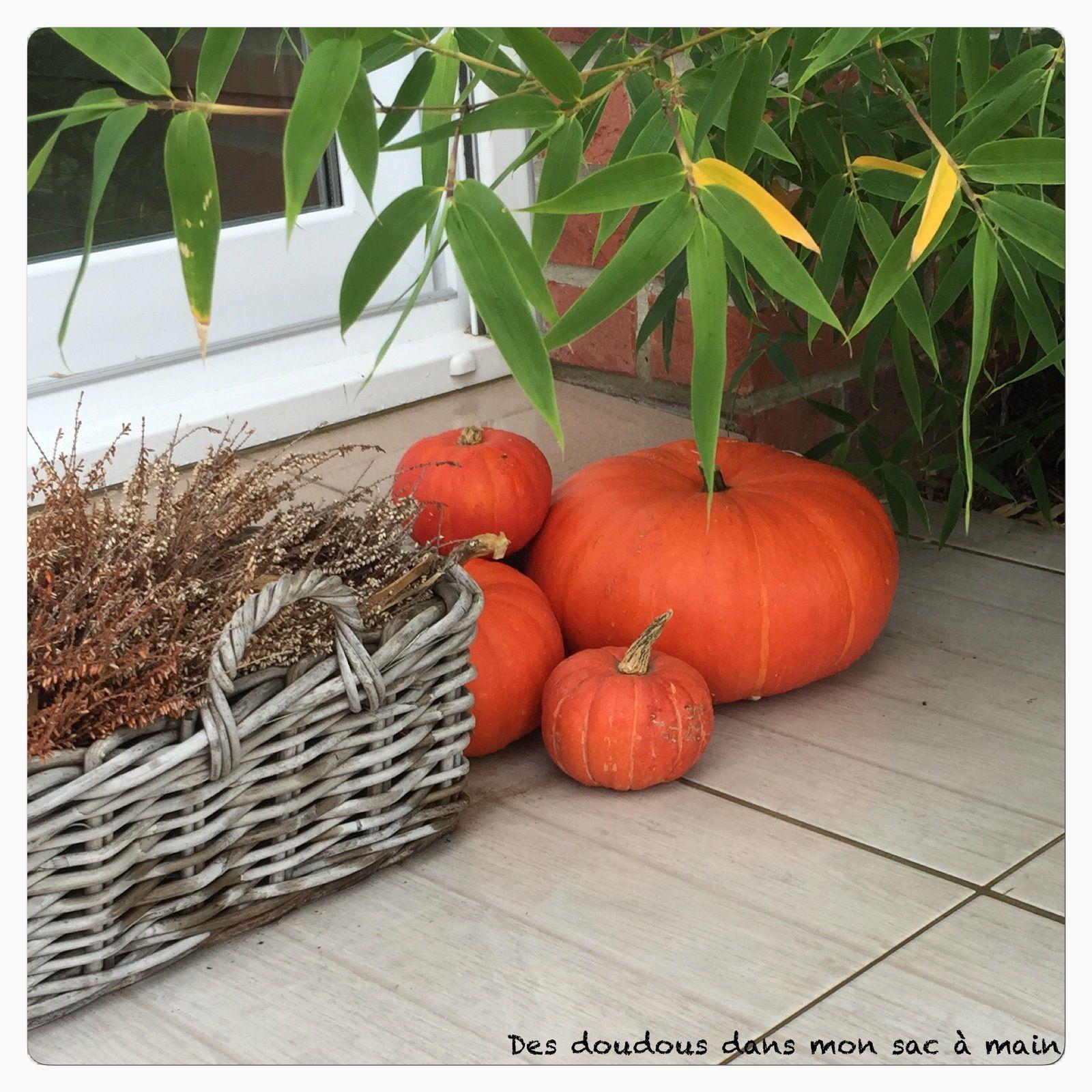 Petites activités pour Halloween