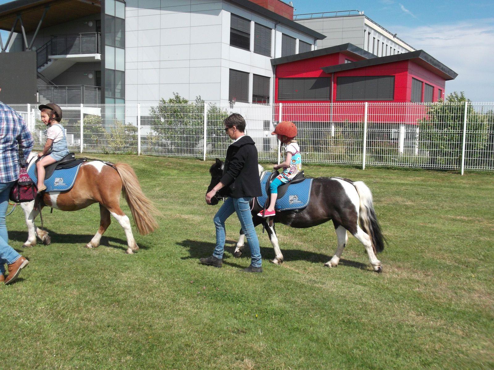 petit tour de poney pour Lily .. (merci l'ancrage 18/07/2015)