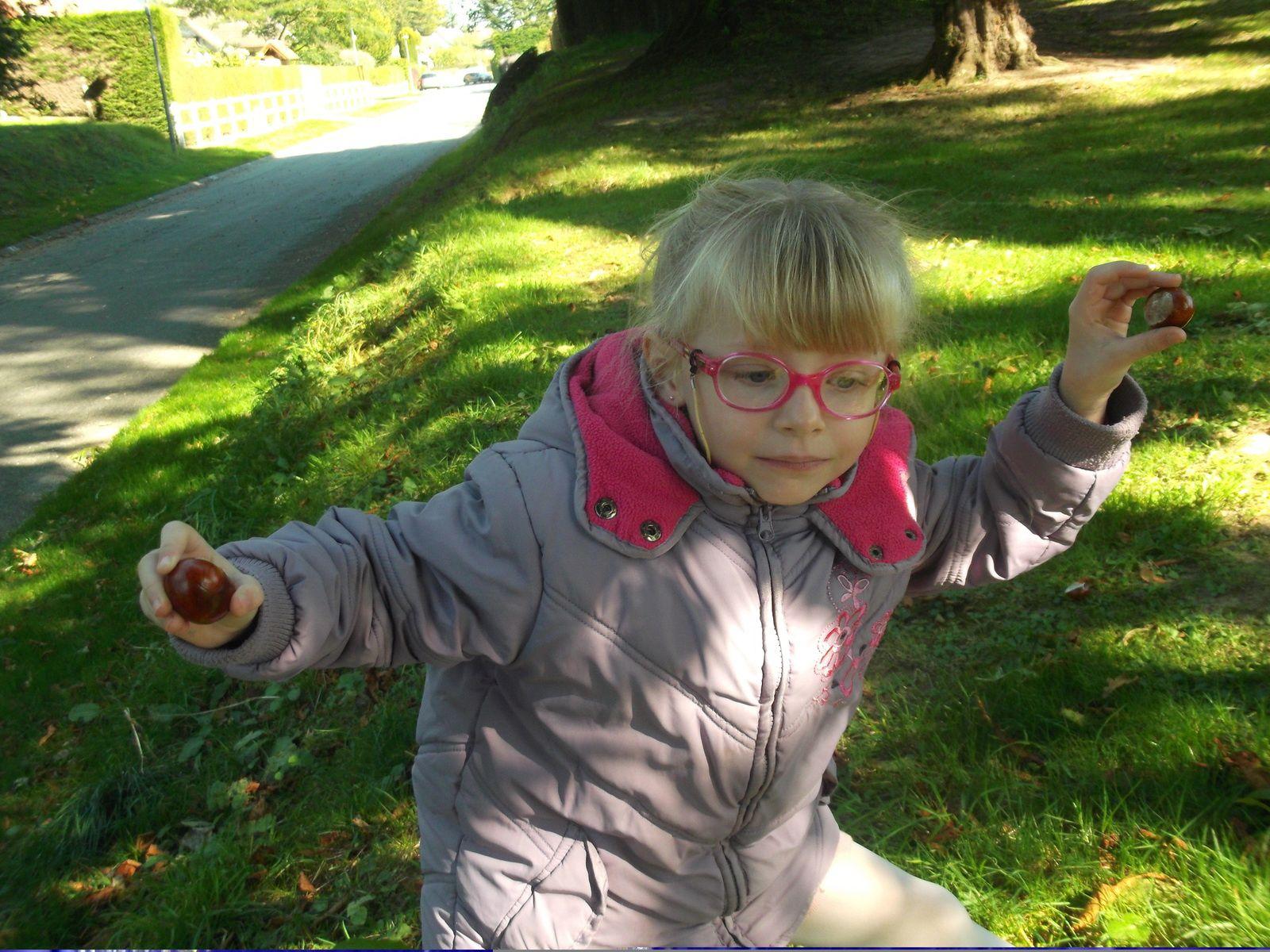 balade et récolte pour les activités d'automne