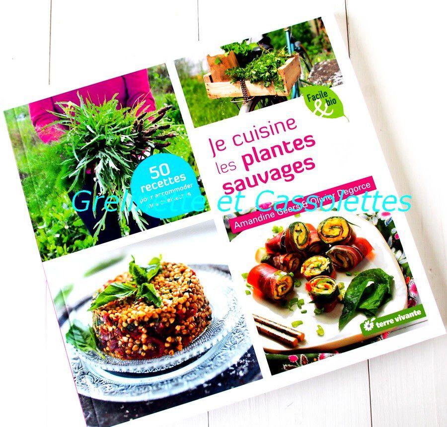 Je cuisine les plantes sauvages grelinette et cassolettes - Cuisine plantes sauvages ...