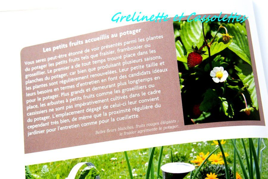 Grand Guide des Plantes Potagères