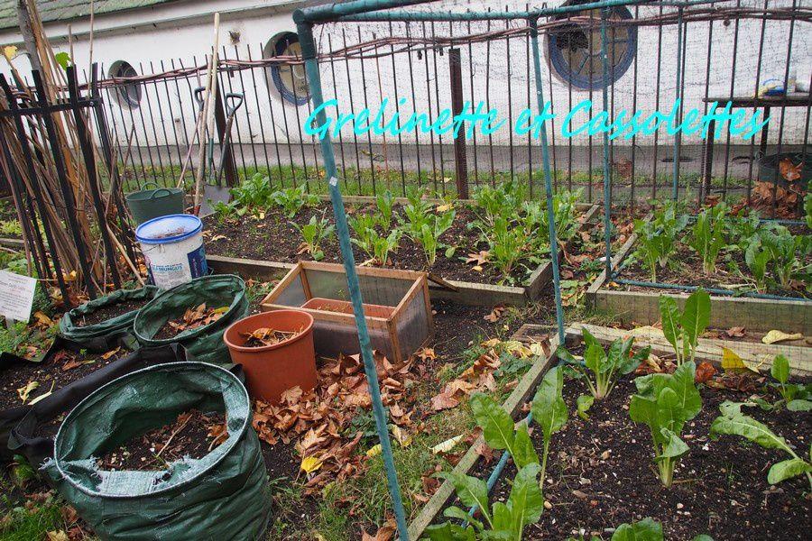 Micro Jardins, Londres