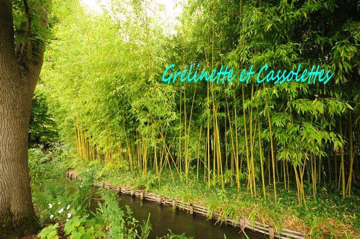 Eté Indien à Giverny, dans les Jardins de Claude Monet