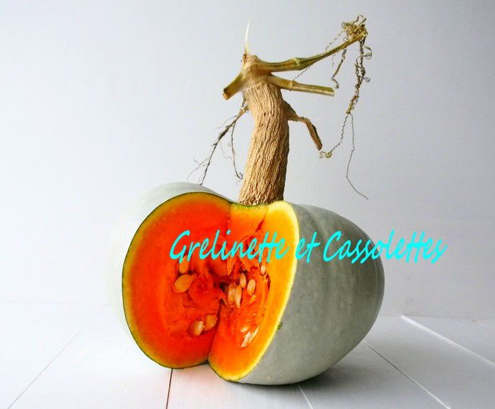 Courge Blue Hubbard