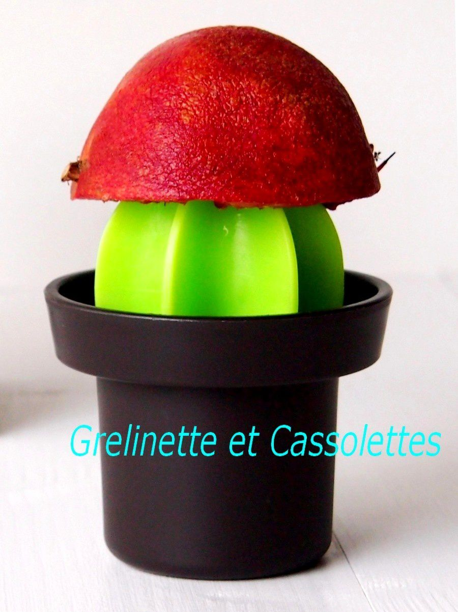 Jus Tonique Orange Carotte Grenade, avec ou sans Extracteur de Jus