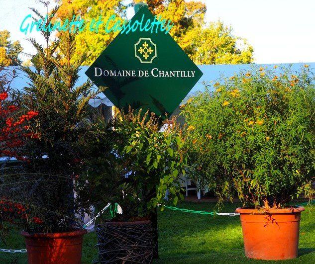 Les journ es des plantes de chantilly automne 2017 - Journee des plantes chantilly ...