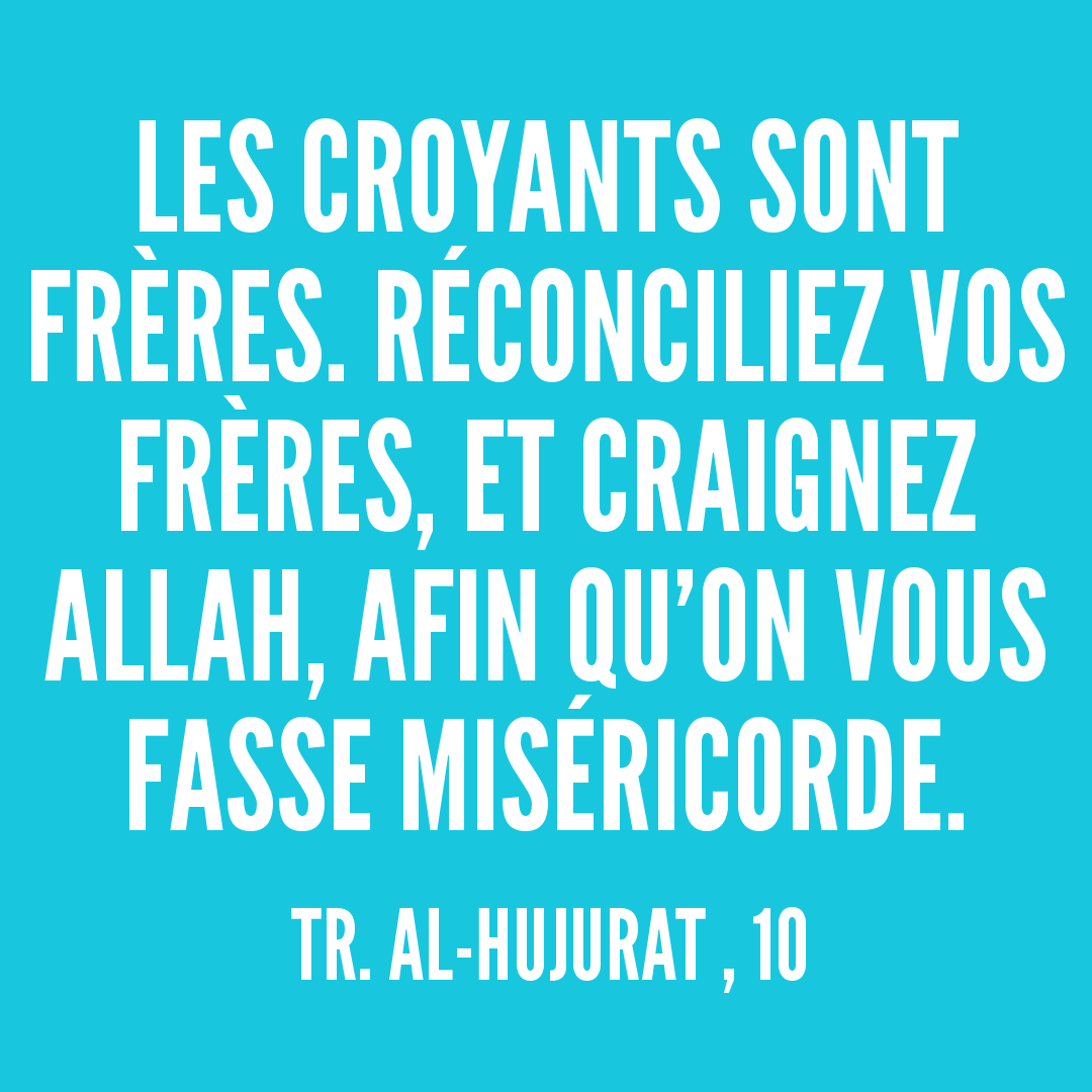Rainbow'Rappels de la Sourate 49