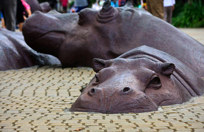 Hippo Square, la place des Hippopotames, Taiwan