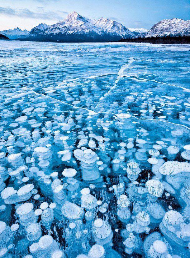 Le lac Abraham et ses bulles gelées, Alberta, Canada