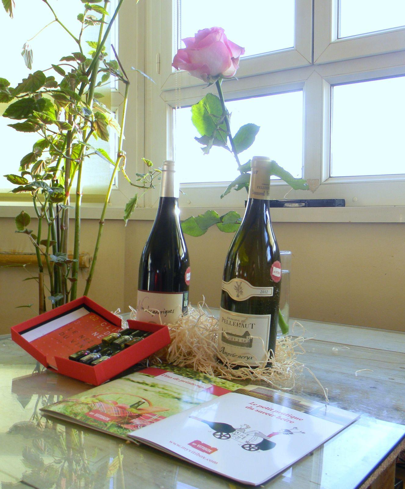 Initions nous au bon goût du vin avec My VitiBox