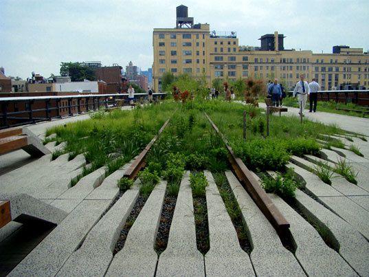 HIGH LINE PARK -  Joshua David + Robert Hammond