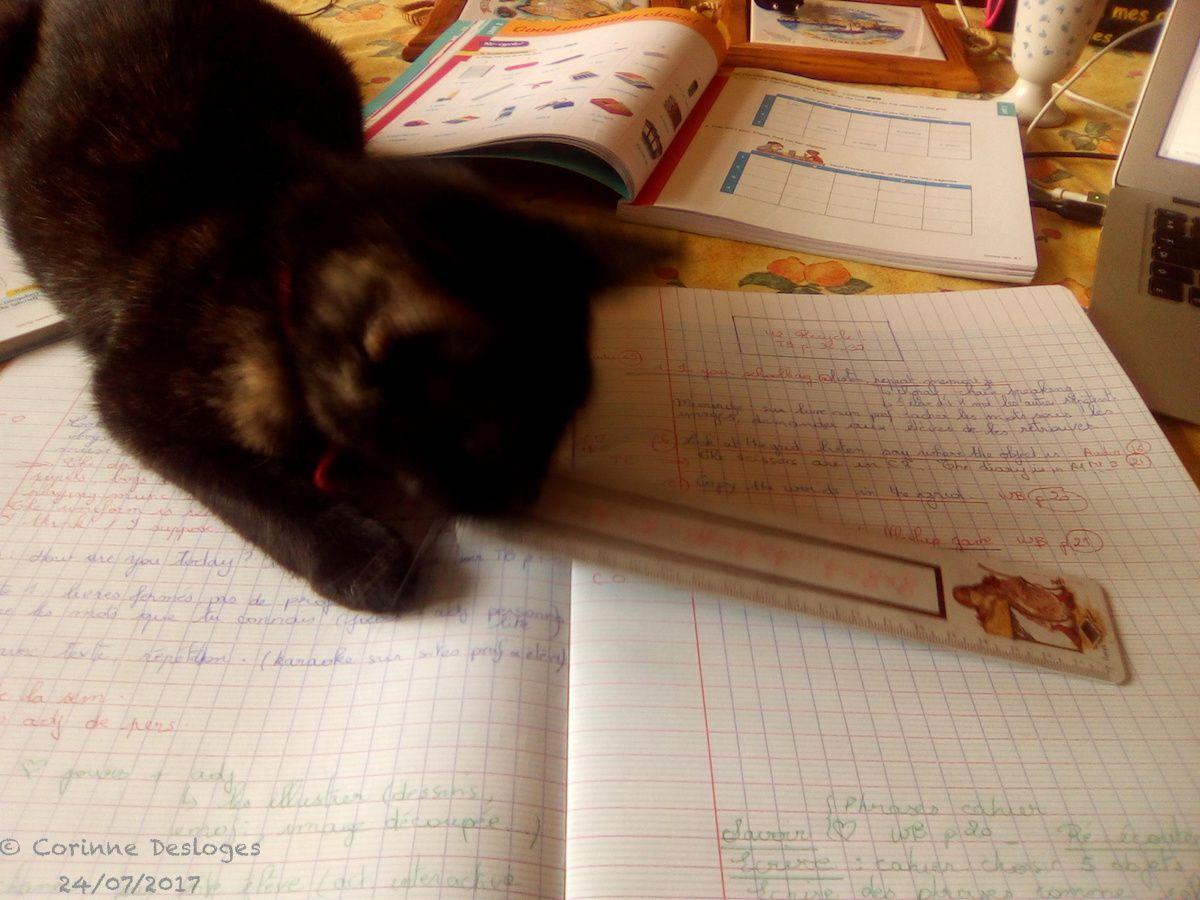 CALYPSO veut devenir prof !