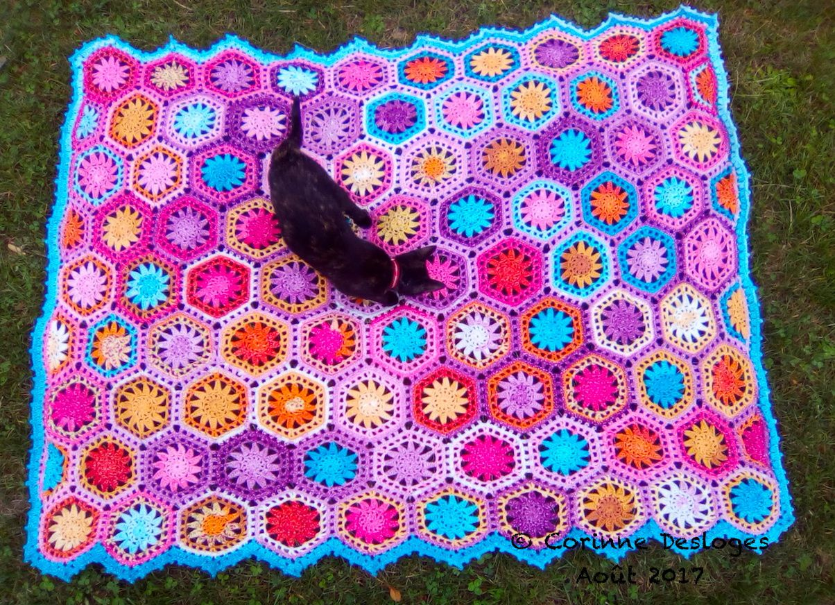 CROCHET : HEXAPLAID terminé